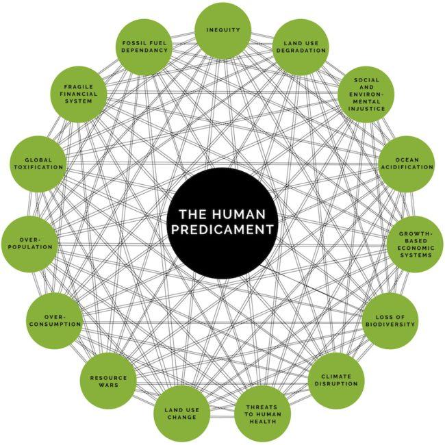 Human Predicament by Michele Guieu