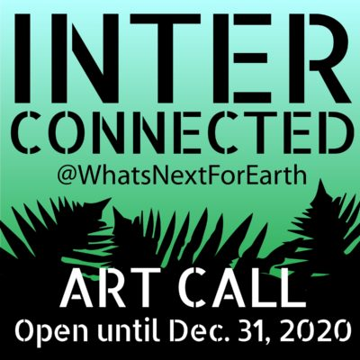 WNFE INTERCONNECTED art call
