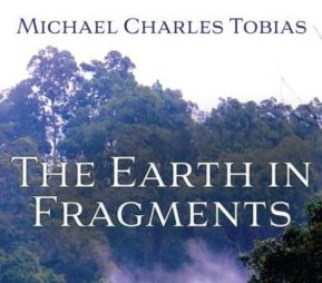 The Earth in Fragments