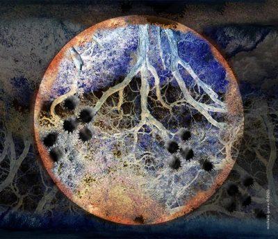 Michele Guieu Planetary Limits