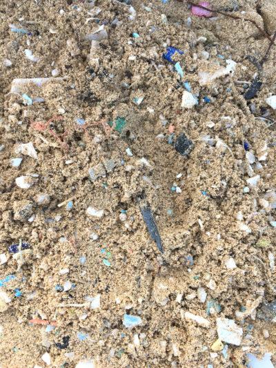 Marianne Bickett Our Plastic World