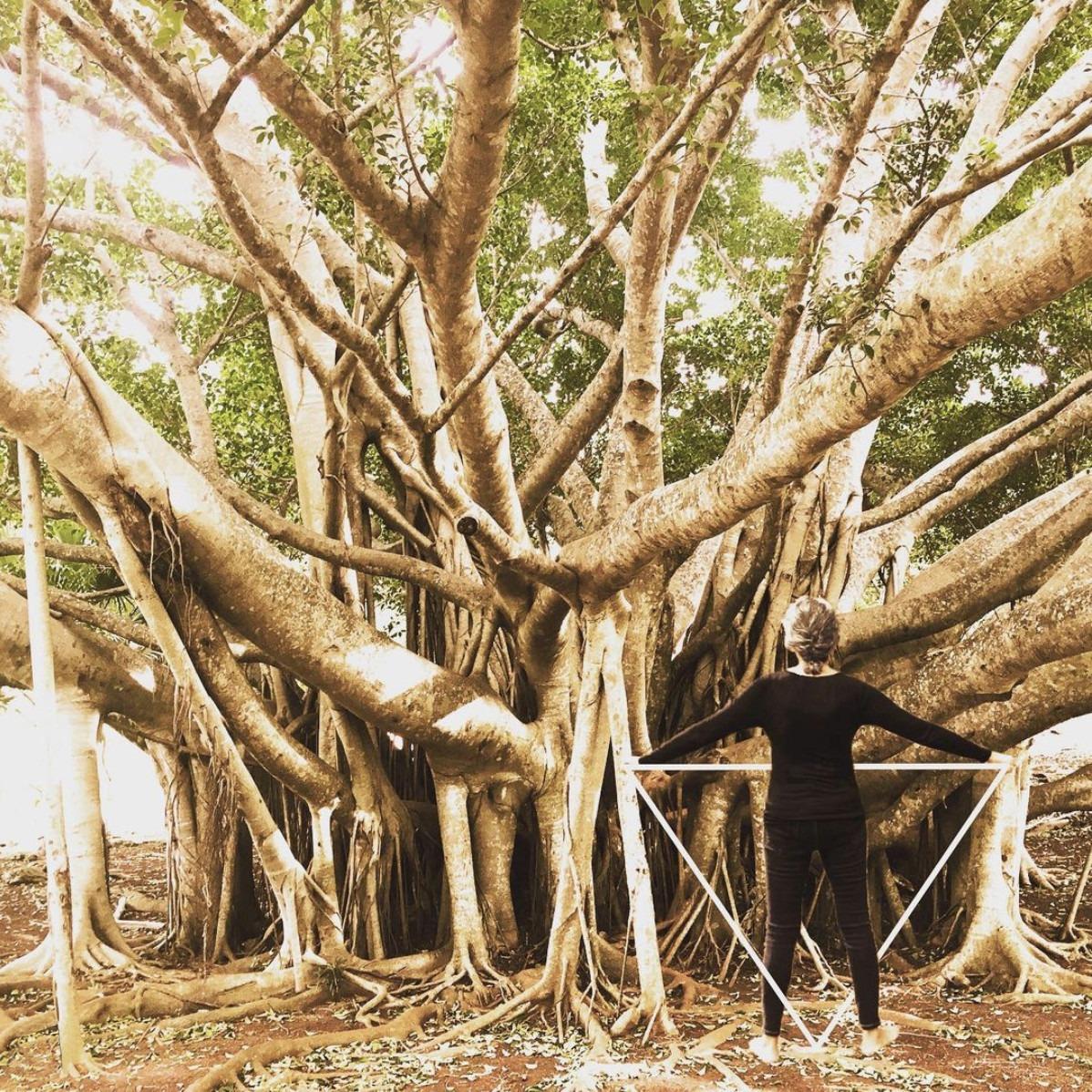 "Marcela Villasenor ""Roots"""
