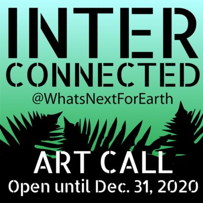 What's Next for Earth INTERCONNECTED