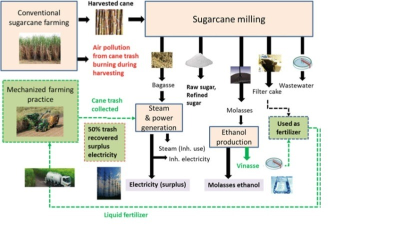 Figure 4-Sugarcane biorefinery system-green-dotted lines indicate improvement options